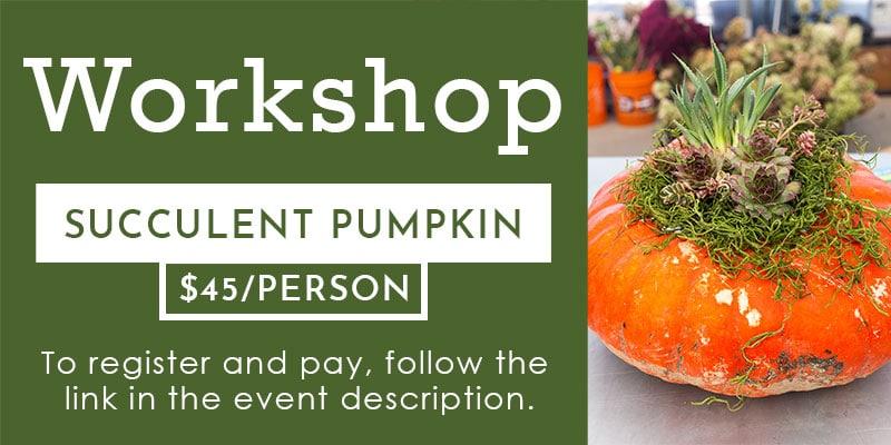 Succulent Pumpkin Workshop banner
